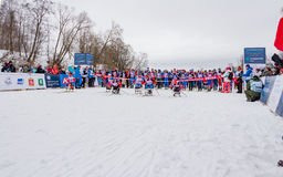11 febbraio 2017 maratona annuale 2017 dello sci di Nikolov Perevoz Russialoppet della corsa di sci della proprietà di arte-Veret Immagine Stock Libera da Diritti