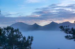 18, febbraio Nebbia 2017 di Dalat- sopra il pino Forest On Sunrise Background e la nuvola beautyful in Dalat- Lamdong, Vietnam Fotografie Stock