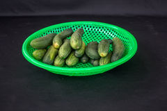 22, febrero El pepino 2017 de Dalat- da fruto en la cesta plástica verde, fondo negro Foto de archivo libre de regalías
