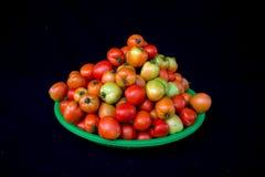 22, febrero El tomate 2017 de Dalat- da fruto en la cesta plástica verde, fondo negro Fotos de archivo