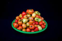 22, febrero El tomate 2017 de Dalat- da fruto en la cesta plástica verde, fondo negro Foto de archivo libre de regalías