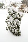 Februar 2010-Sturm Stockfoto