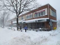 Februar-Blizzard Stockbilder