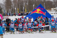 11. Februar 2017 Skirennen-Nikolov Perevoz Russialoppet des Kunst--Veretevozustandes jährlicher Skimarathon 2017 Paralympic-Renne Stockfotografie