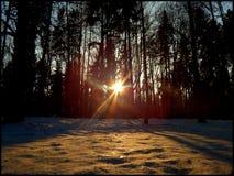 Februar-Sonnenuntergang Stockfotos
