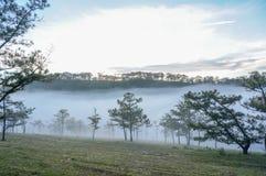 18 Februari Dalat- dimma 2017 över sörja Forest On Sunrise Background och beautyful moln i Dalat- Lamdong, Vietnam arkivbilder