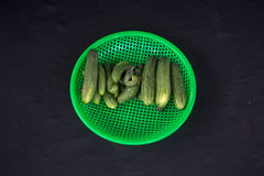 22, Februari 2017 Dalat--komkommervruchten en zwarte backgroun Royalty-vrije Stock Afbeeldingen