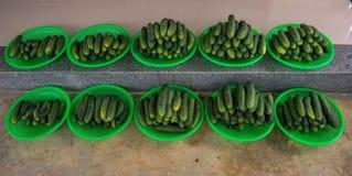 22, Februari 2017 Dalat--komkommervruchten en zwarte backgroun Royalty-vrije Stock Foto