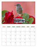 2014 Februari-kalender Stock Afbeelding