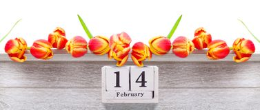 14 februari, rode gele tulpen voor de dag van Valentine ` s Stock Foto
