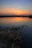 februari solnedgång Royaltyfri Bild