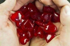 Februari 14 symbol av hjärtan i händerna Fotografering för Bildbyråer