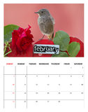 2014 February calendar Stock Image
