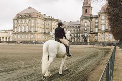 February 20, 2019. Denmark. Copenhagen. Training bypass Adaptation of a horse in the royal stable of the castle Christiansborg. Slots. Man rider in uniform and royalty free stock photo