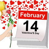 February 14, a rose for Valentine's Day Royalty Free Stock Images