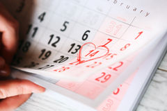 14 February - Valentines day Royalty Free Stock Photography