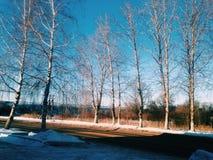 February winter day. Beautiful winter day Stock Photography
