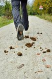 Feces on the road Stock Photo