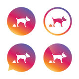 Feces sign icon. Clean up after pets symbol. Stock Photos
