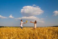 Fecha en un campo de trigo Imagenes de archivo