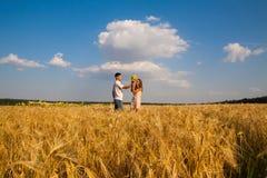 Fecha en un campo de trigo Imagen de archivo libre de regalías