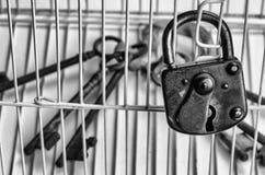 Fecha fechado em uma gaiola Fotografia de Stock Royalty Free