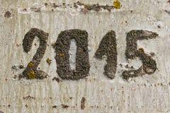 Fecha 2015 grabada en un árbol Imagen de archivo libre de regalías