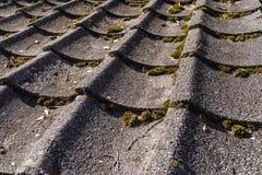 Fechado envelhecido acima da telha de telhado de japão do tradtional com musgo seco frio Fotografia de Stock