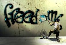 Grafittis da liberdade ilustração stock