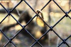 Fechaduras da porta que penduram em uma grelha do ferro Imagem de Stock