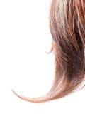 Fechamento da peruca Imagem de Stock Royalty Free