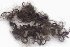 Fechamento do cabelo Imagem de Stock Royalty Free