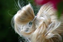 Fechamento do cabelo Fotografia de Stock Royalty Free