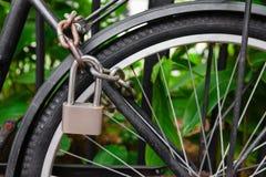Fechamento e corrente da segurança que obstruem a roda de bicicleta Fotos de Stock Royalty Free