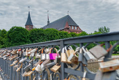 Fechamentos da ponte de Medovy do amor Kaliningrad Rússia Imagens de Stock Royalty Free