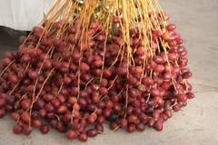 Fechas rojas Imagen de archivo libre de regalías