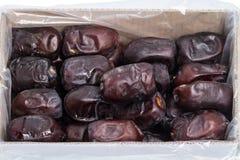 Fechas secadas (fruta tropical) en la caja Imagen de archivo libre de regalías