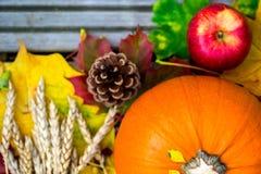 Feche acima da abóbora, de Apple, do trigo e de Autumn Leaves alaranjados Imagens de Stock