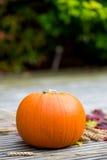 Feche acima da abóbora e de Autumn Leaves alaranjados em Backg de madeira Fotos de Stock Royalty Free