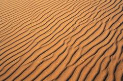 Feche acima da areia no parque de Coral Pink Sand Dunes State, UT do sul Imagens de Stock Royalty Free