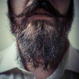 Feche acima da barba e do bigode longos foto de stock