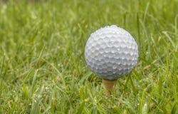 Feche acima da bola de golfe branca após a chuva Fotografia de Stock Royalty Free