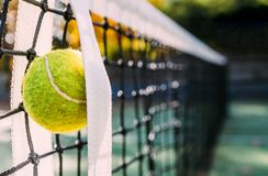 Feche acima da bola de tênis na rede Imagens de Stock