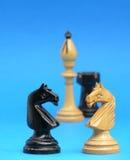 Feche acima da cabeça - - os cavaleiros principais Fotos de Stock Royalty Free