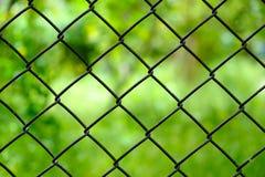Feche acima da cerca de fio do ferro isolada imagem de stock royalty free