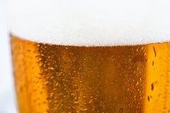 Feche acima da cerveja fria em um vidro Foto de Stock