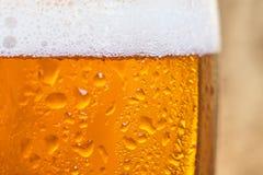 Feche acima da cerveja fria em um vidro Imagem de Stock Royalty Free