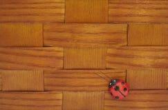 Feche acima da cesta do piquenique do vintage com joaninha Fotos de Stock