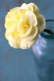 Feche acima da flor amarela imagem de stock