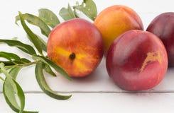 Feche acima da foto de frutos da nectarina na tabela de madeira branca rústica Fotografia de Stock